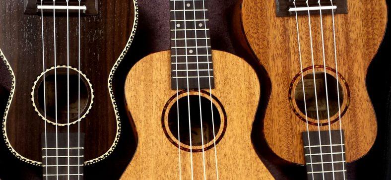 ukulele beginners guide