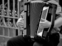 The 5 Best Accordions for Beginners – For All Budgets