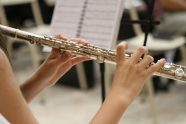 The 5 Best Flutes For Beginner to Advanced Players