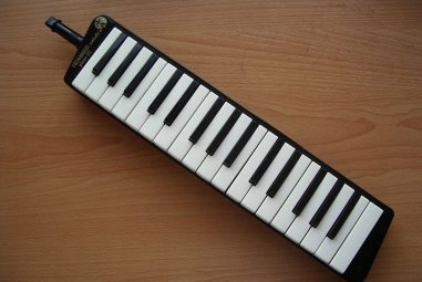 The 5 BestMelodicas for Beginners – Reviews and Guide