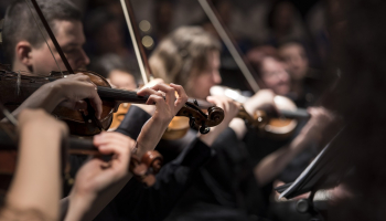 List of String Instruments in an Orchestra