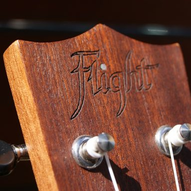 The 5 Best Ukulele Tuners for Quick and Easy Tuning